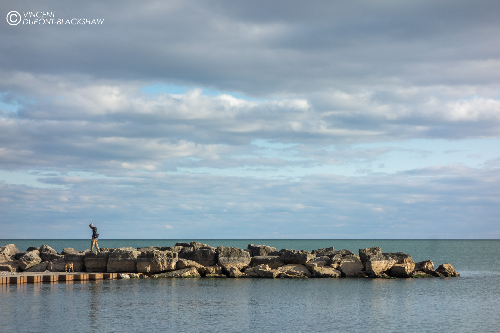 Dog walker  ///  A man walks his dog on a pier of the Beaches are in Toronto